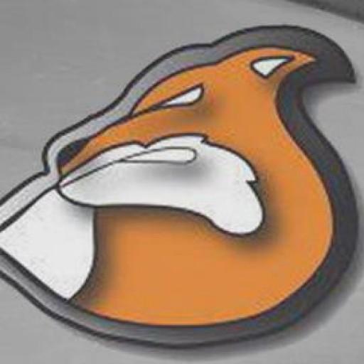 cropped-551164_279976612083700_755012710_n